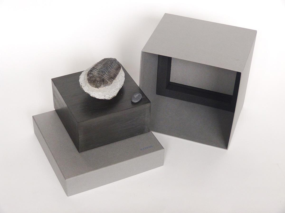 Transformation Repsol con caja