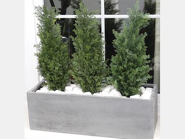 Plantas-artificiales